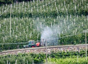 Des militants écologistes sous le coup de poursuites judiciaires dans le nord de l'Italie pour avoir critiqué l'usage massif de pesticides dans la région