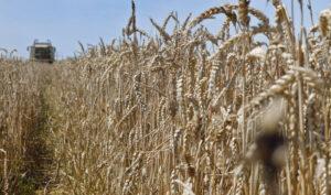 Chambre d'agriculture de la Vienne: pour le lanceur d'alerte Hervé Gasse, «ce qui est inquiétant, c'est le temps qui passe»
